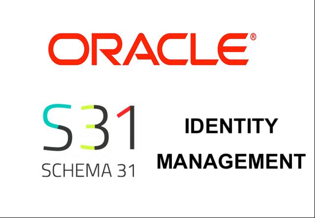 IT Security Engineer OIM Schema31