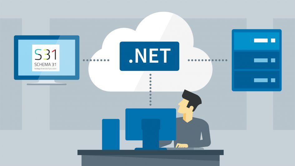 .net schema31